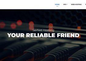 SerNetHosting法国OVH大硬盘高防VPS:1核2G/100G硬盘/无限流量/200Mbps/KVM/4美元/月