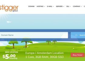 Hostigger:荷兰VPS促销中,1核3G/30G SSD/可选windows/1TB流量/1Gbps/2.99美元首月 限量100台